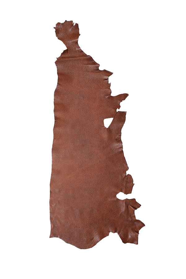 American Bison Peanut Hide